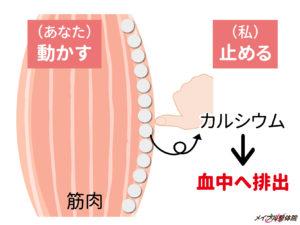 メイプル接骨院(緩消法)